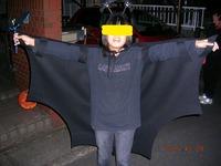 Bat_daio